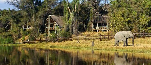Savute Safari Lodge in Chobe