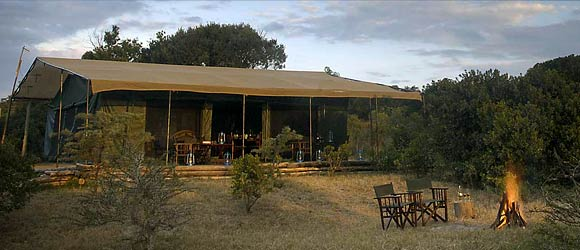 Tent at Porini Rhino Camp
