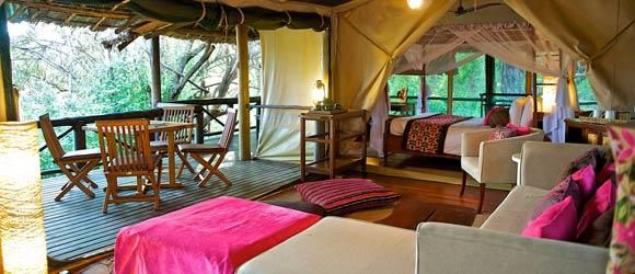Samburu Intrepids family tent