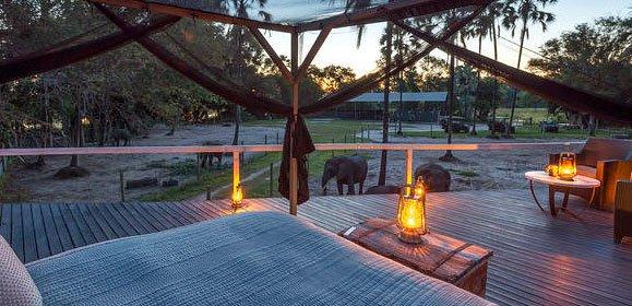 Elephant Star Bed, Abu Camp