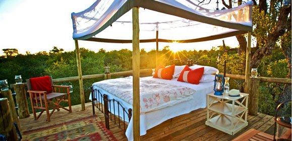 Safari Star Bed