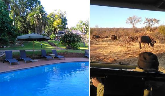 Stanley & Livingstone Safari Lodge