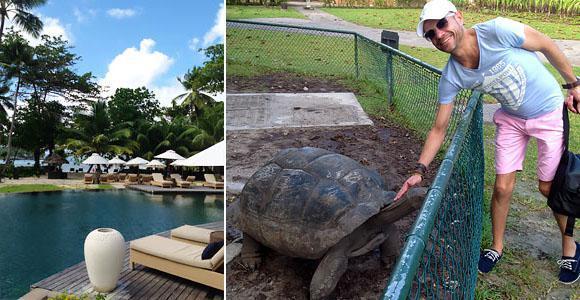 Constance Ephelia pool & tortoises