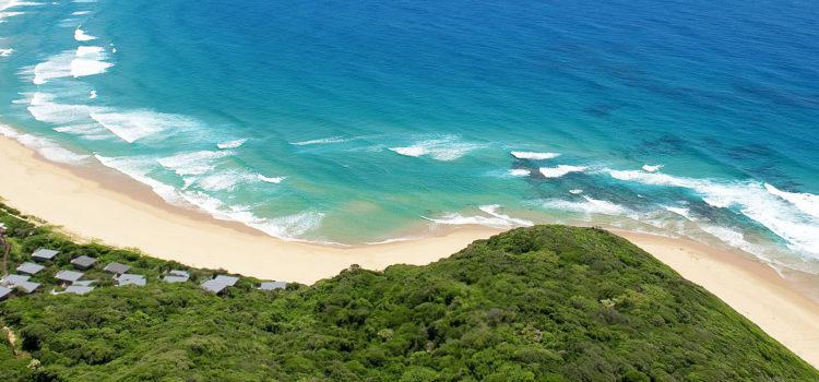 Big Five Safari to Beach Paradise