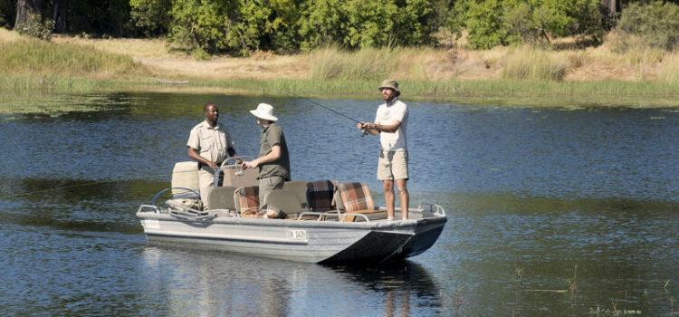Adventurous Safari in Khwai & Delta