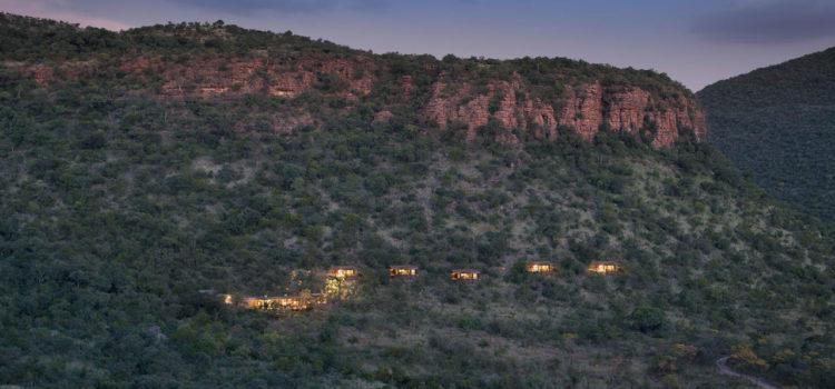 A Conservation Safari in South Africa