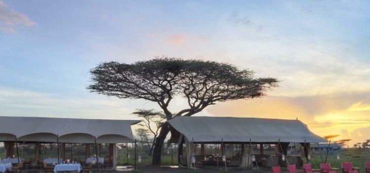 andBeyond Serengeti Under Canvas