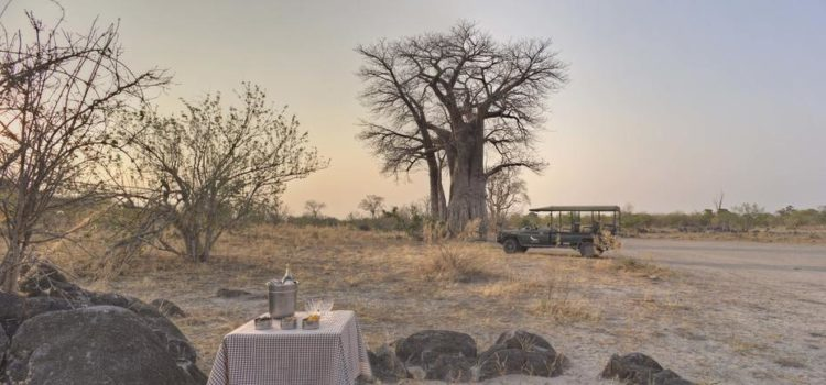 Untamed Botswana Fly-In Safari