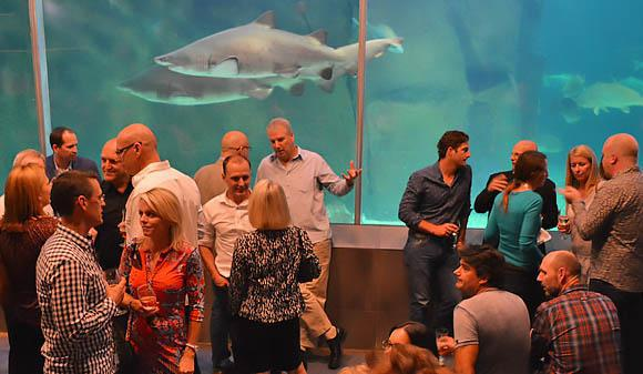 Travel Smart Crew at the aquarium