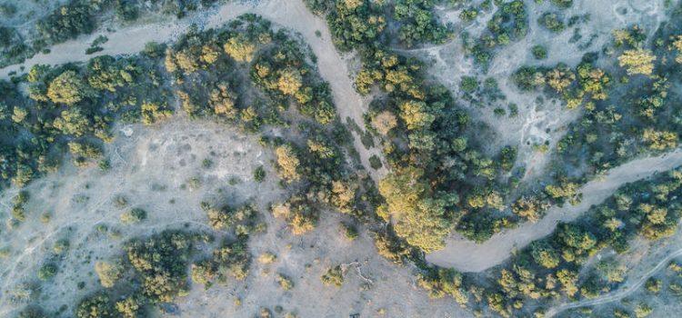 Tanda Tula Field Camp