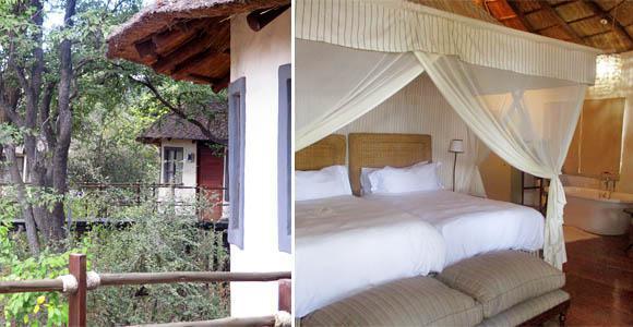 Sussi & Chuma tree-houses