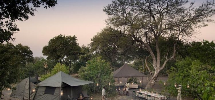 Botswana Mobile Camping Experience