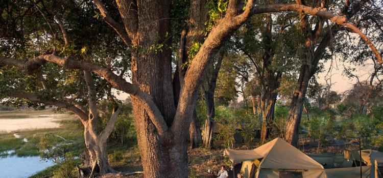 andBeyond Expedition – Classic Explorer Safari