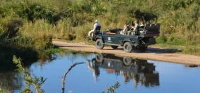 All in a Day at Londolozi