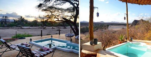 Sasaab Lodge pool & view