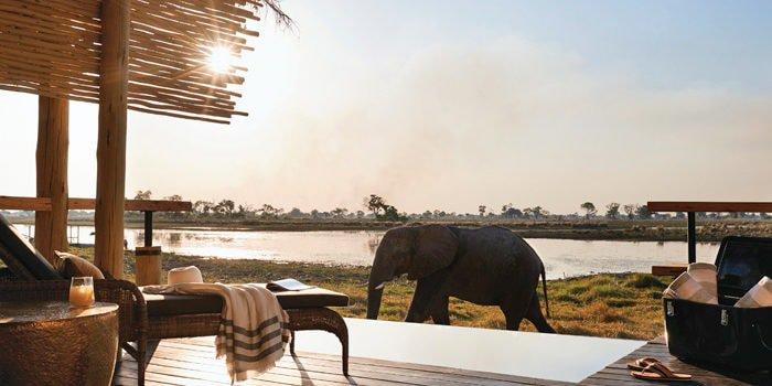 Honeymoon-Perfect Cape Town & Safari
