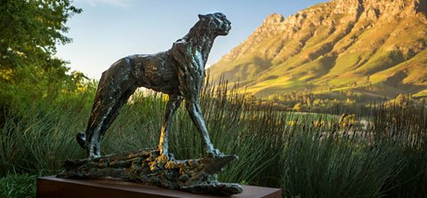 The Art of Travel in South Africa