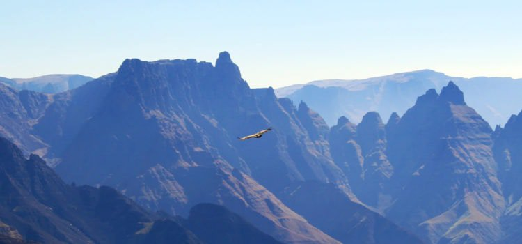 Into the Drakensberg, Inspiration for Lord of the Rings