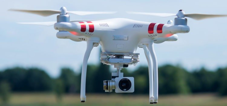 Safari Drone Photography: Know Before You Go