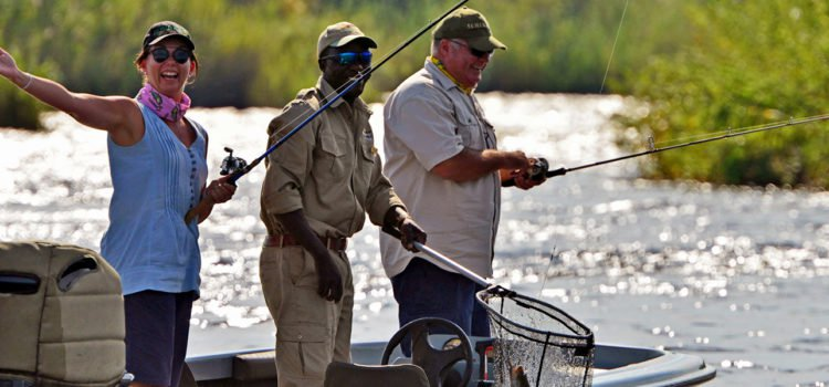 Catching Tigers on the Zambezi