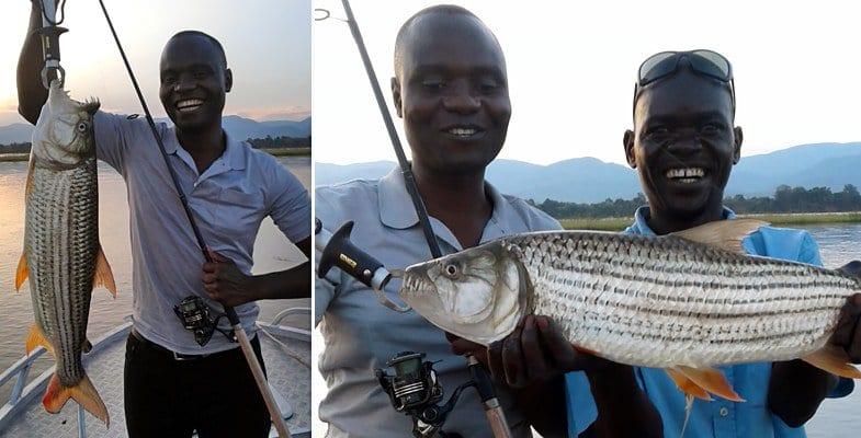 Catching a tiger fish on the Zambezi RIver