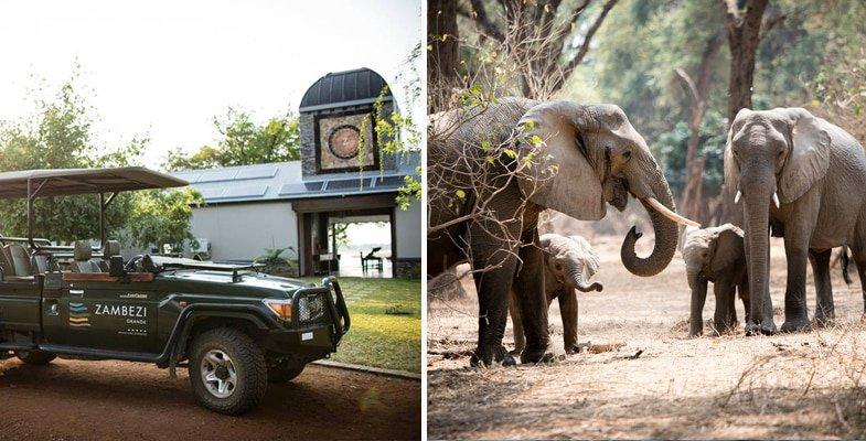 Game drive at Zambezi Grande