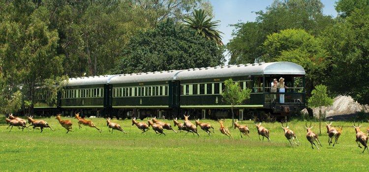 Luxury Rail Across South Africa