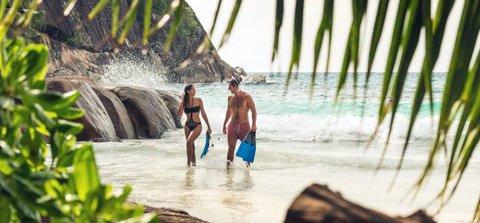 City, Safari & Seychelles Island Bliss
