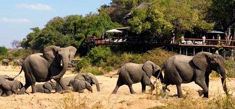 Best of South Africa Golfing Safari