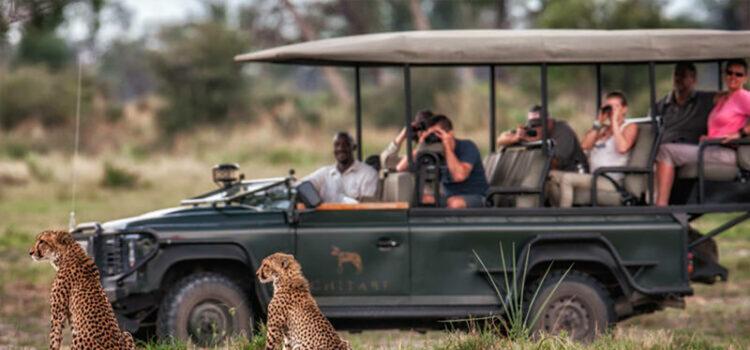 Honeymoon in Botswana – Kalahari, Moremi & Okavango