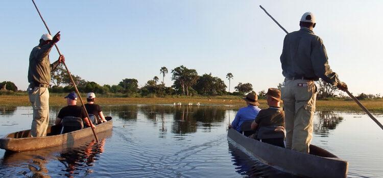 The Okavango Delta: Africa's Ultimate Water-Based Safari