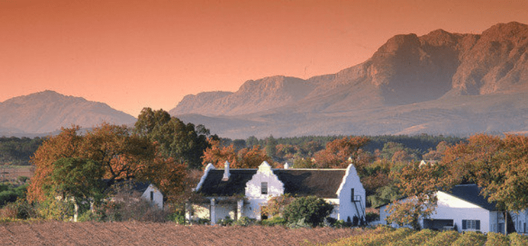 Best Wine Farms in the Cape Winelands