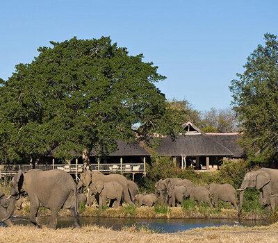 Sabi Sabi Private Game Reserve – Special Offer